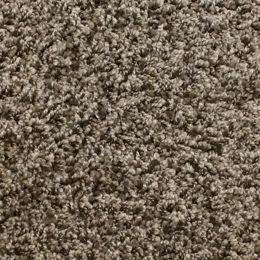 STAINMASTER Essentials Conway Lone Star Plush Carpet Sample