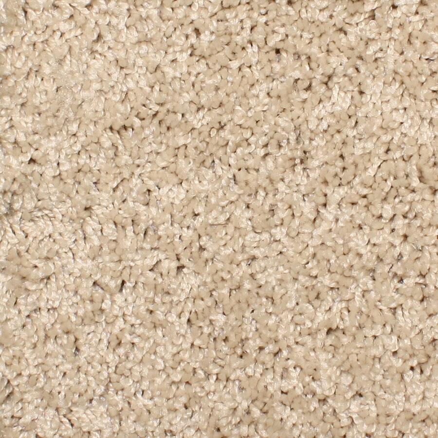 STAINMASTER Durand Essentials Sand Trap Plus Carpet Sample