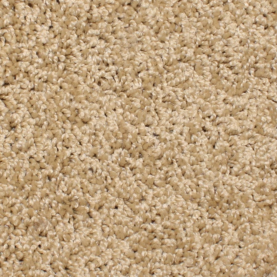 STAINMASTER Essentials Durand Butterfield Carpet Sample