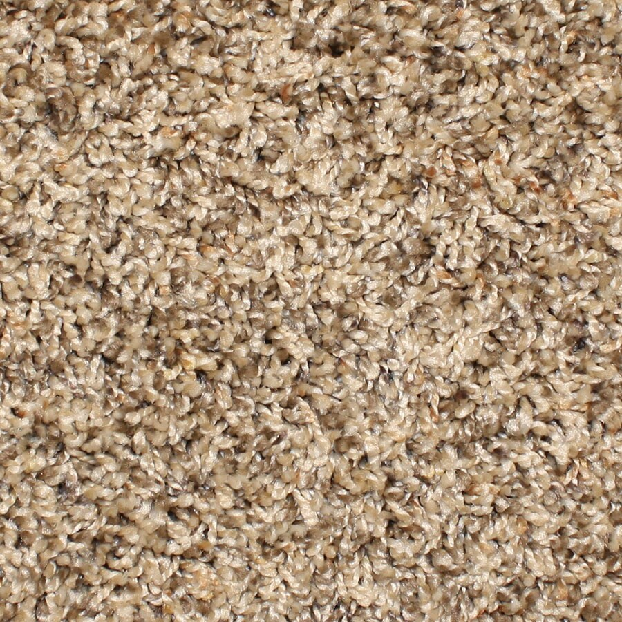 STAINMASTER Essentials Durand Rave Review Carpet Sample