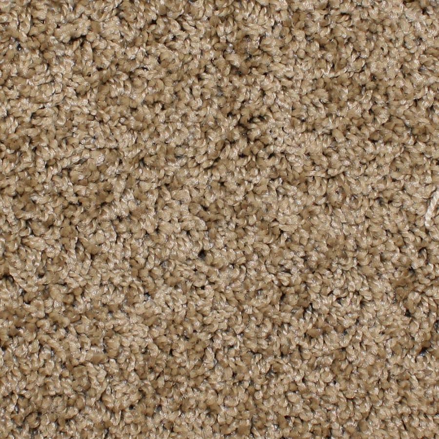 STAINMASTER Durand Essentials Private Club Plus Carpet Sample