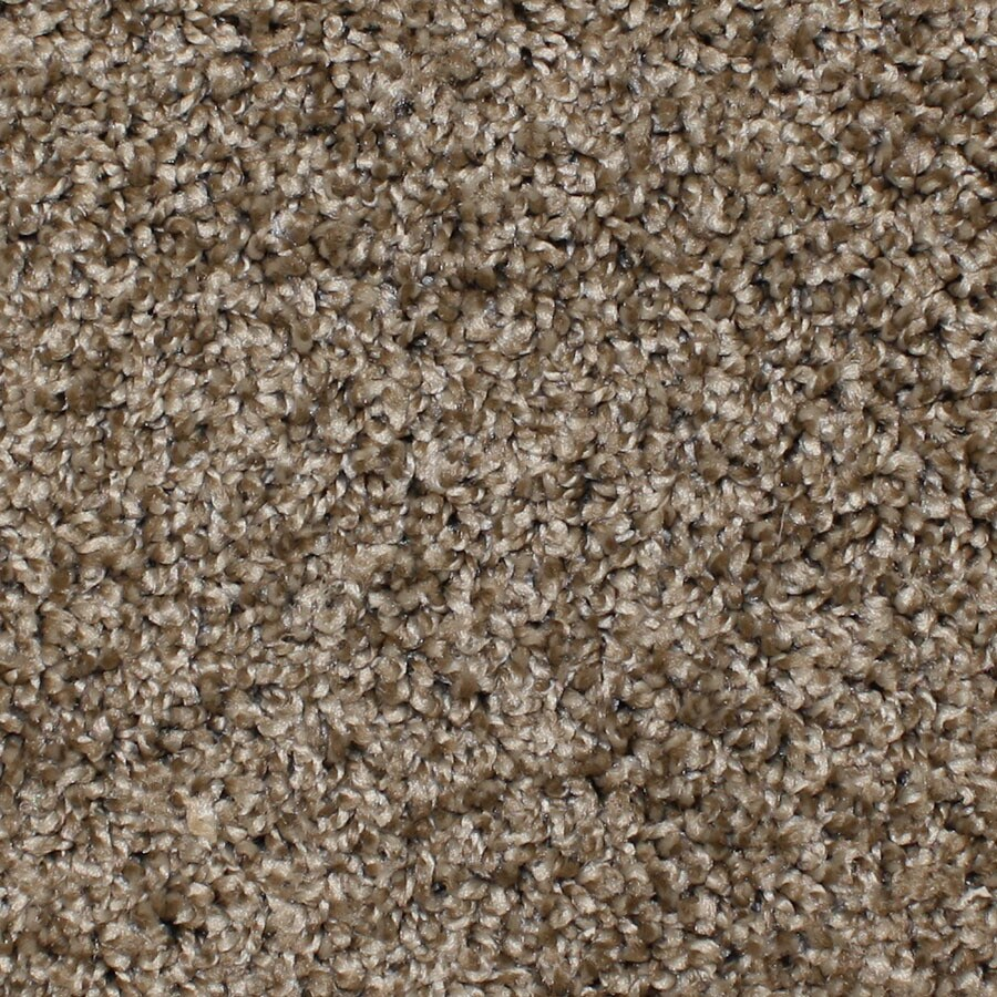 STAINMASTER Essentials Durand Desert wildlife Carpet Sample