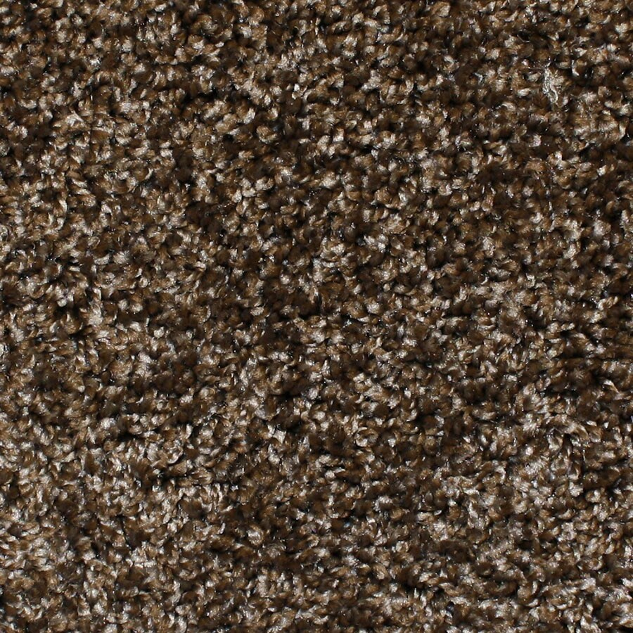 STAINMASTER Durand Essentials Main Stage Plus Carpet Sample
