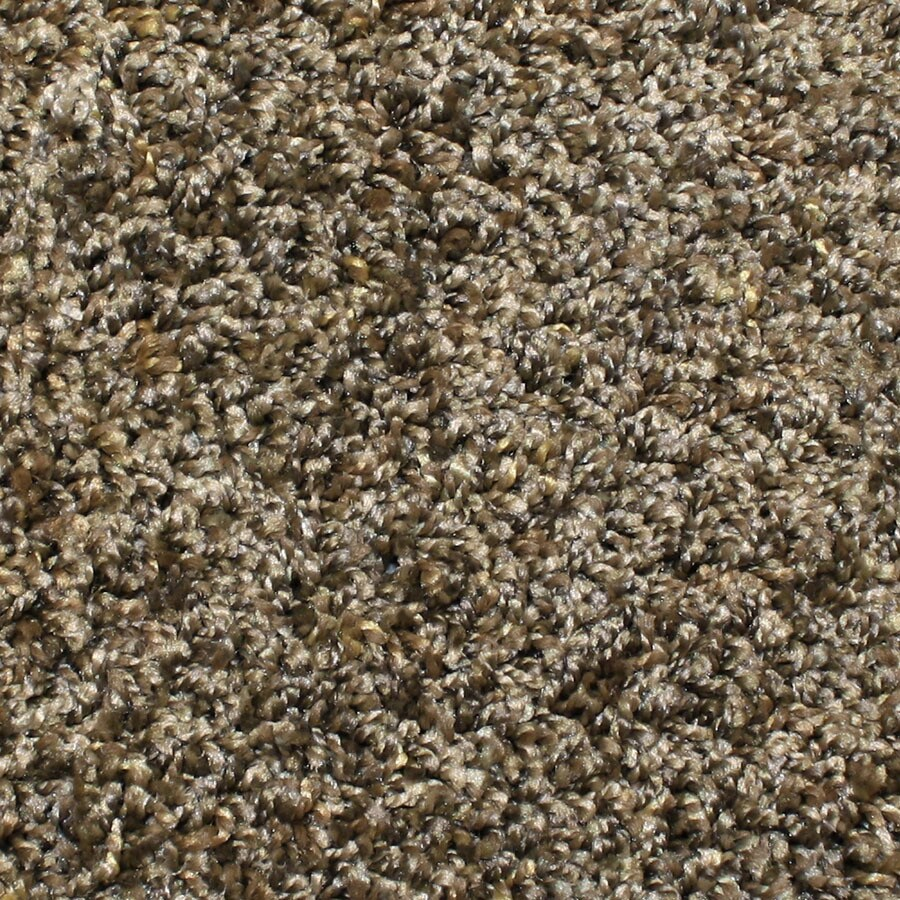 STAINMASTER Durand Essentials Rolling Hills Plush Carpet Sample