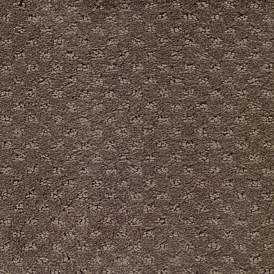 STAINMASTER Active Family Presidio Beethoven Berber/Loop Carpet Sample