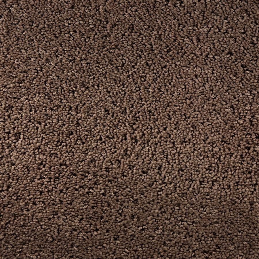 STAINMASTER Presidio Active Family Inward Cut and Loop Carpet Sample