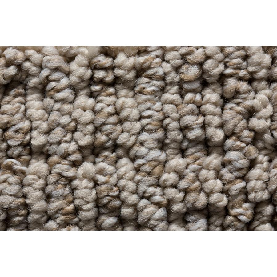 STAINMASTER Active Family Sojourn Downstream Berber/Loop Carpet Sample
