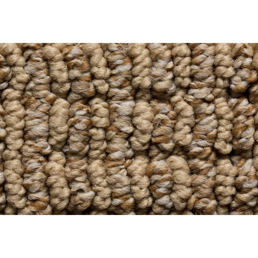 STAINMASTER Active Family Sojourn Midsummer Berber/Loop Carpet Sample