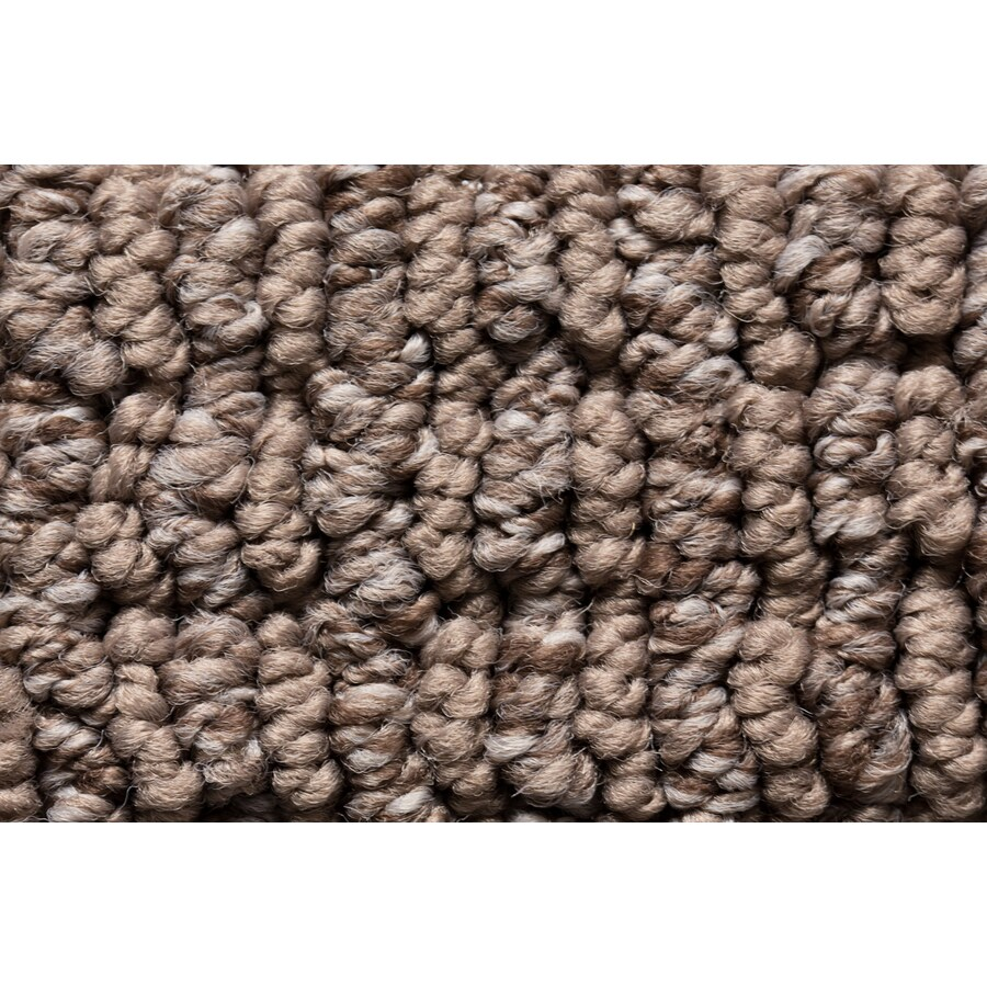 STAINMASTER Active Family Sojourn Natural Form Berber/Loop Carpet Sample