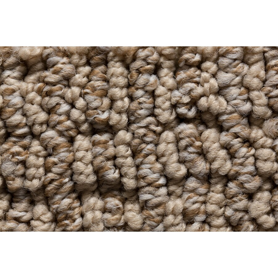 STAINMASTER Active Family Sojourn Rocky Walls Berber/Loop Carpet Sample