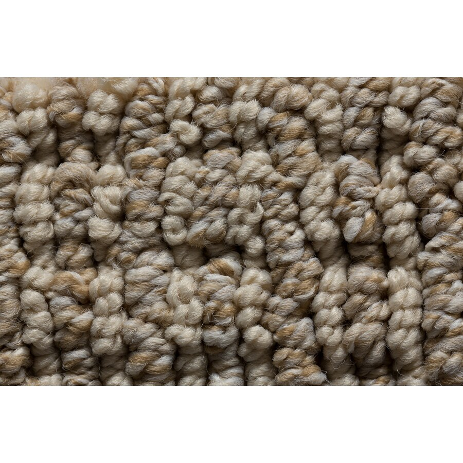 STAINMASTER Active Family Sojourn Sheer Slopes Berber/Loop Carpet Sample