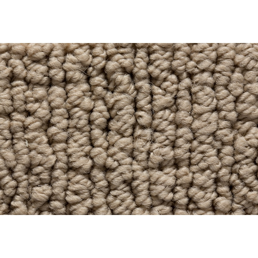 STAINMASTER Sojourn Active Family Iconic Form Berber Carpet Sample