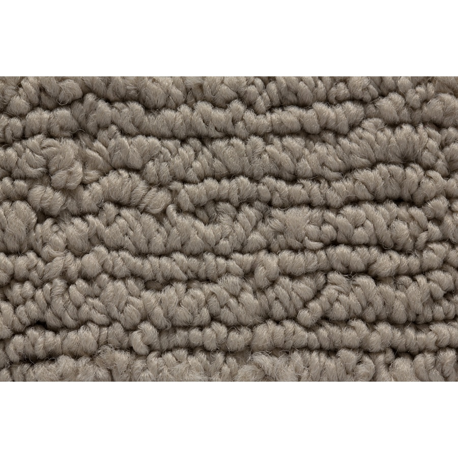 STAINMASTER Sojourn Active Family Modern Motif Berber Carpet Sample