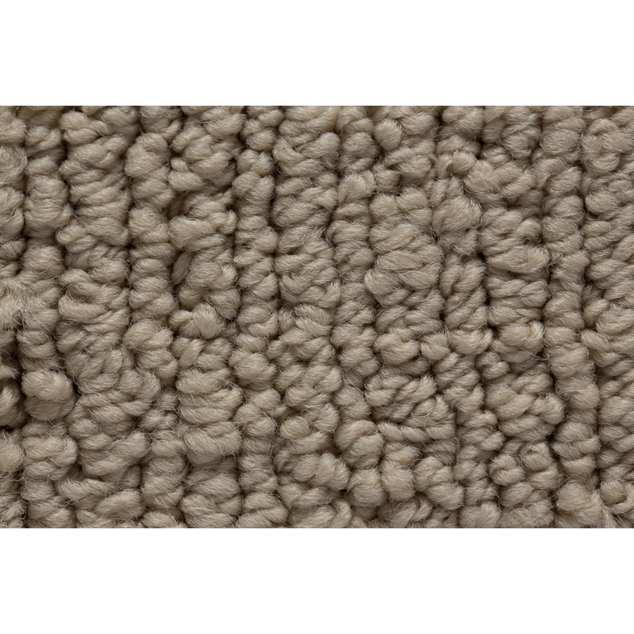 STAINMASTER Active Family Sojourn Panoramic View Berber/Loop Carpet Sample