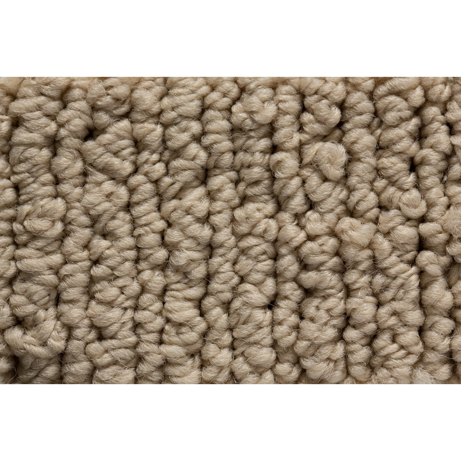 STAINMASTER Sojourn Active Family Rare Quality Berber Carpet Sample