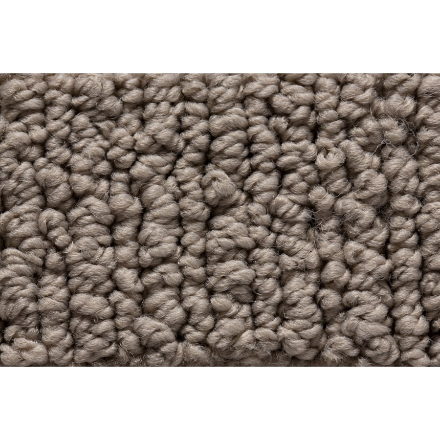 STAINMASTER Sojourn Active Family Stylish Accent Berber Carpet Sample