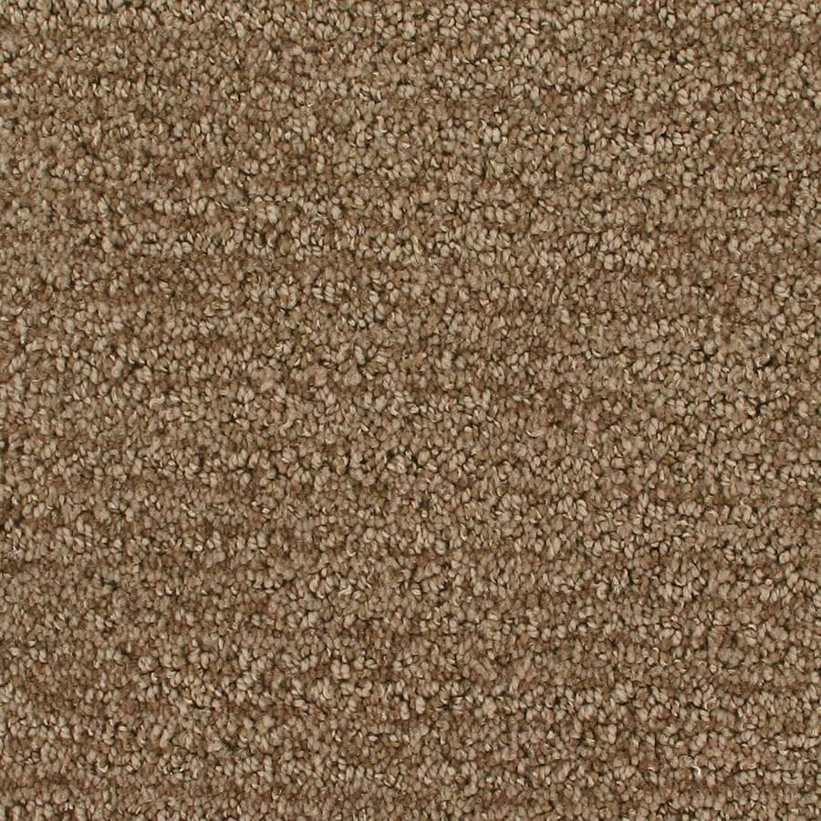 STAINMASTER Orion Active Family Colossal Cut and Loop Carpet Sample
