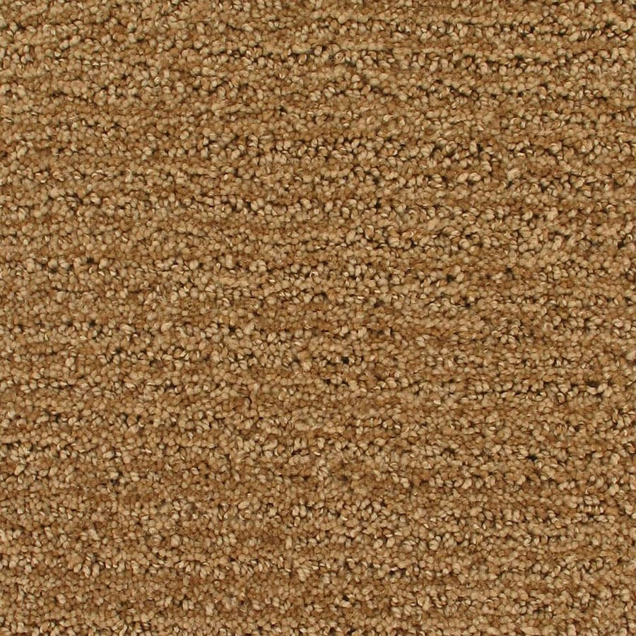 STAINMASTER Orion Active Family Airglow Cut and Loop Carpet Sample