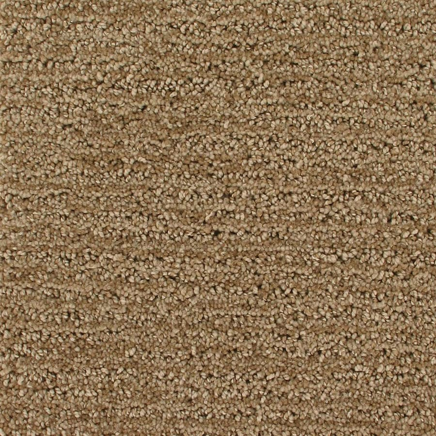 STAINMASTER Active Family Orion Orbiting Berber/Loop Carpet Sample