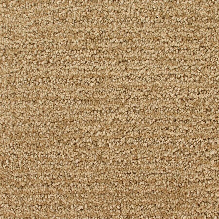 STAINMASTER Active Family Orion Newton Rings Berber/Loop Carpet Sample