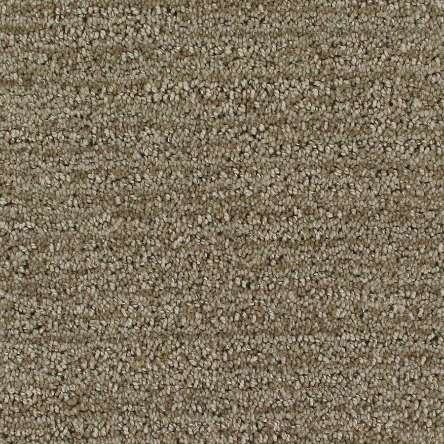 STAINMASTER Active Family Orion Halo Berber/Loop Carpet Sample