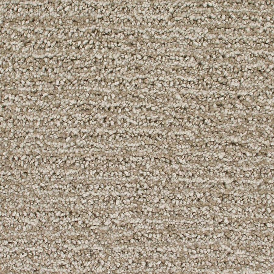 STAINMASTER Active Family Orion Cloud Mist Berber/Loop Carpet Sample