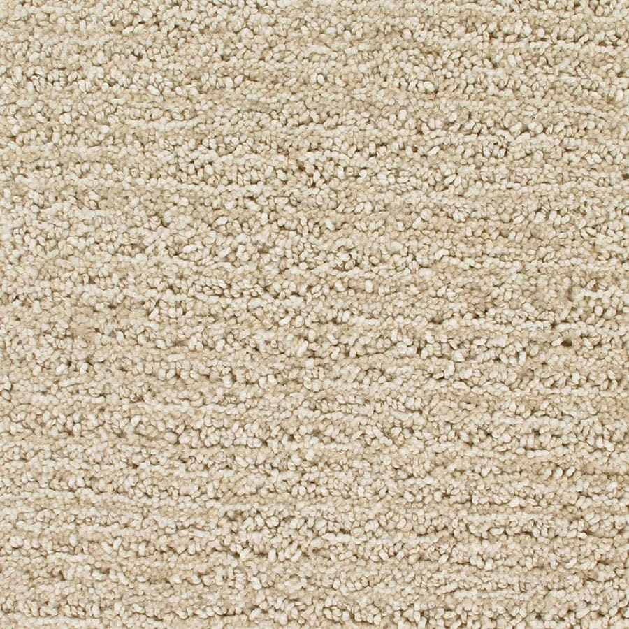 STAINMASTER Orion Active Family Magellan Cut and Loop Carpet Sample