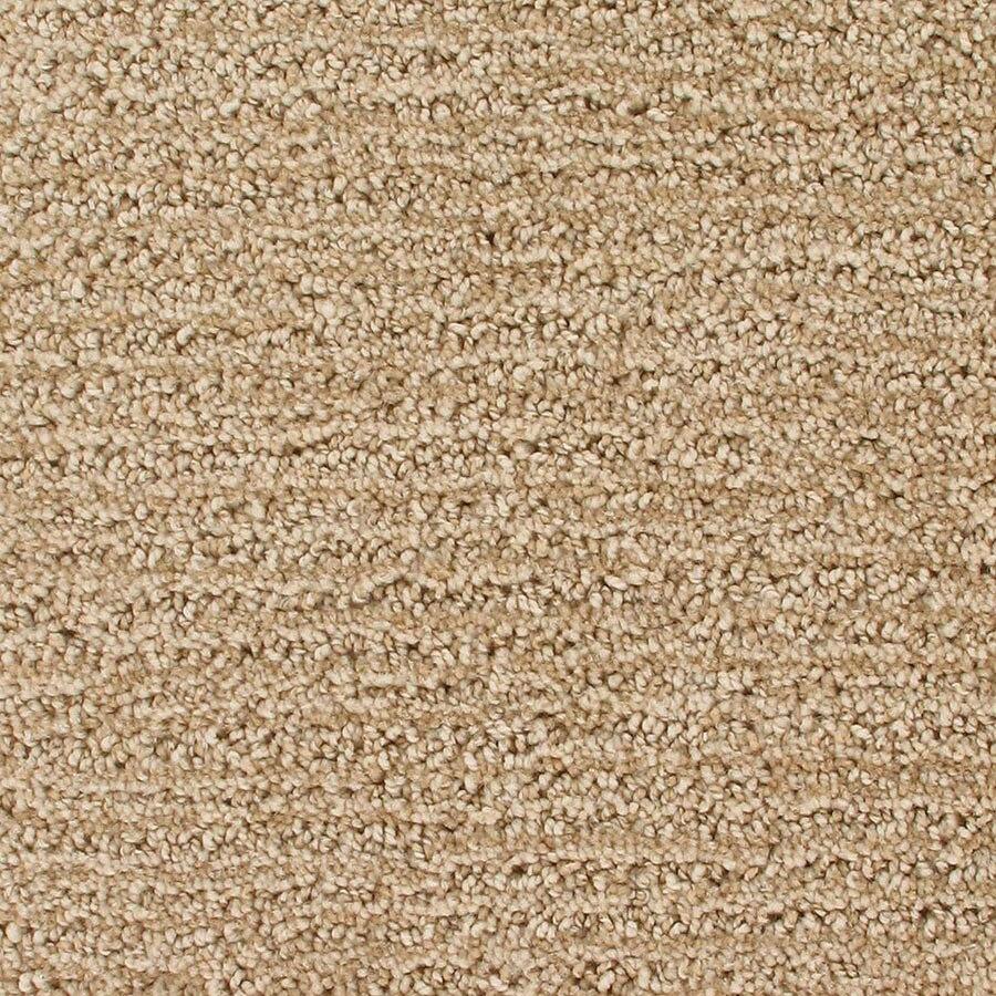 STAINMASTER Orion Active Family Atmosphere Cut and Loop Carpet Sample