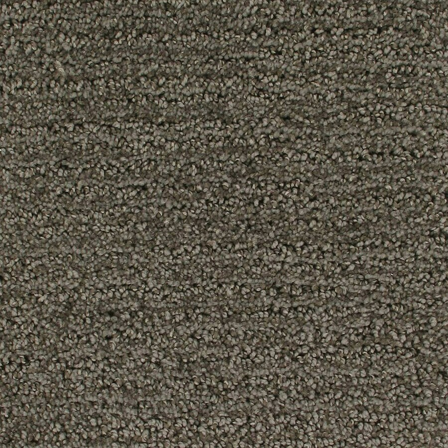STAINMASTER Active Family Orion Launch Berber/Loop Carpet Sample