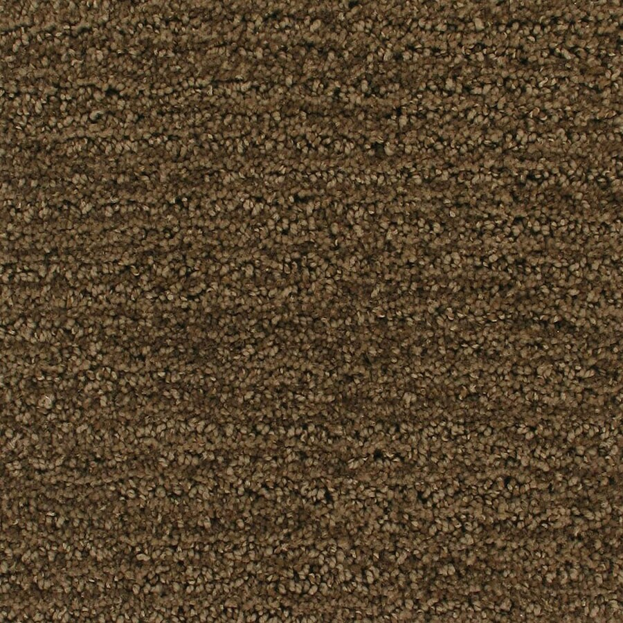 STAINMASTER Active Family Orion Flyby Berber/Loop Carpet Sample