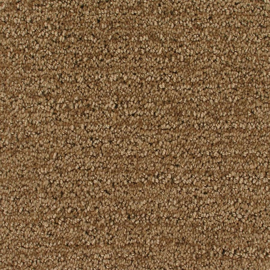 STAINMASTER Orion Active Family Surface Cut and Loop Carpet Sample