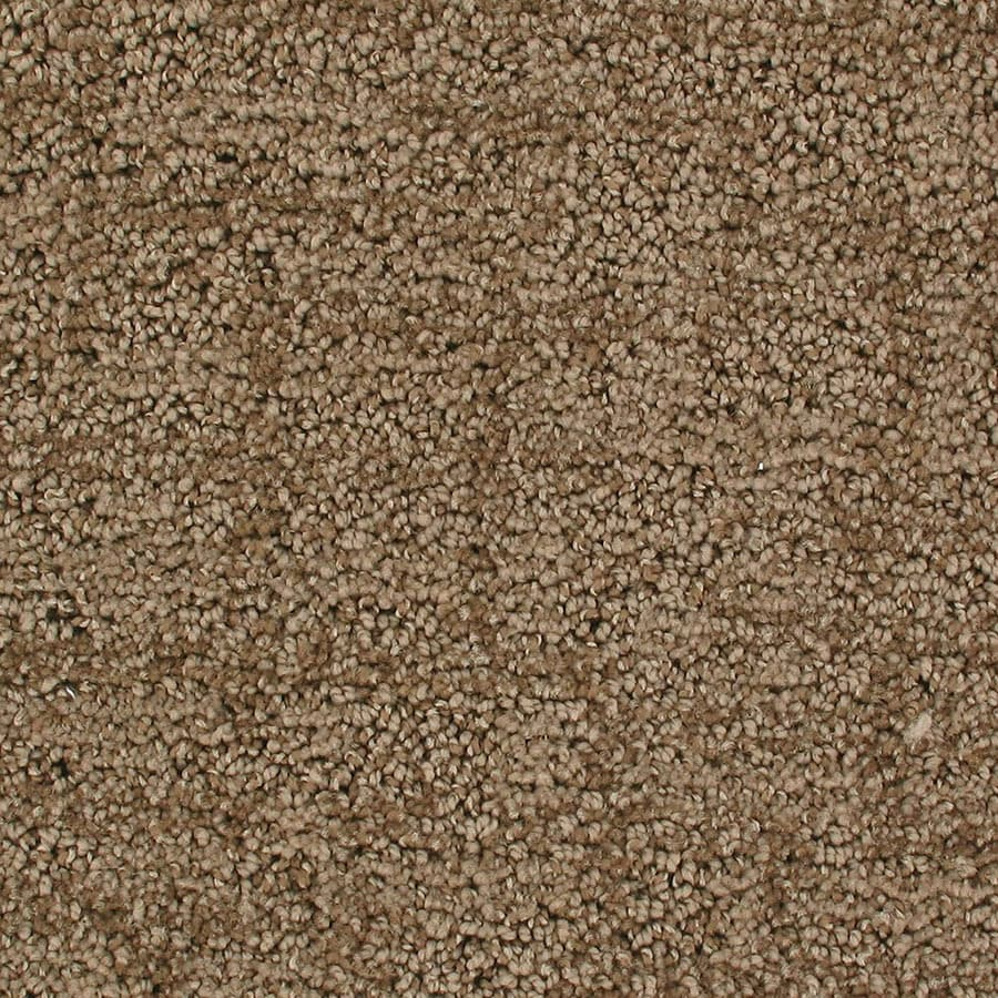 STAINMASTER Active Family Galaxy Colossal Berber/Loop Carpet Sample