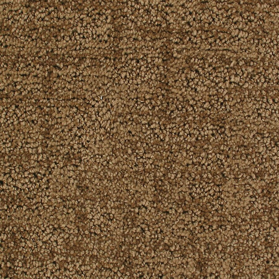STAINMASTER Active Family Galaxy Timeline Berber/Loop Carpet Sample