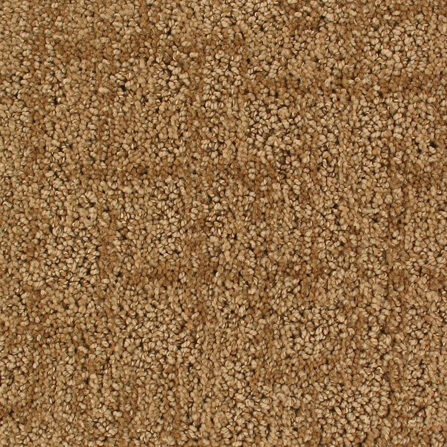 STAINMASTER Galaxy Active Family Airglow Cut and Loop Carpet Sample