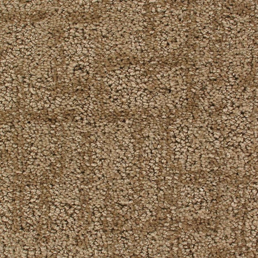 STAINMASTER Active Family Galaxy Orbiting Berber/Loop Carpet Sample