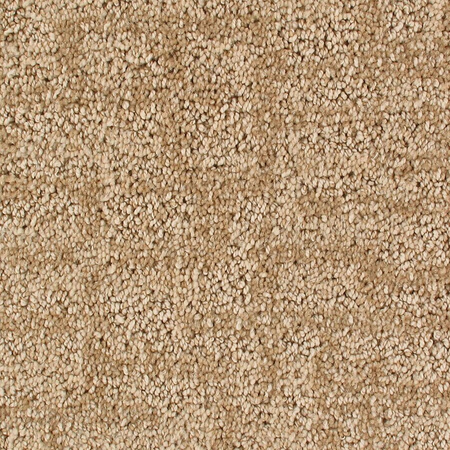 STAINMASTER Active Family Galaxy Irongate Berber/Loop Carpet Sample