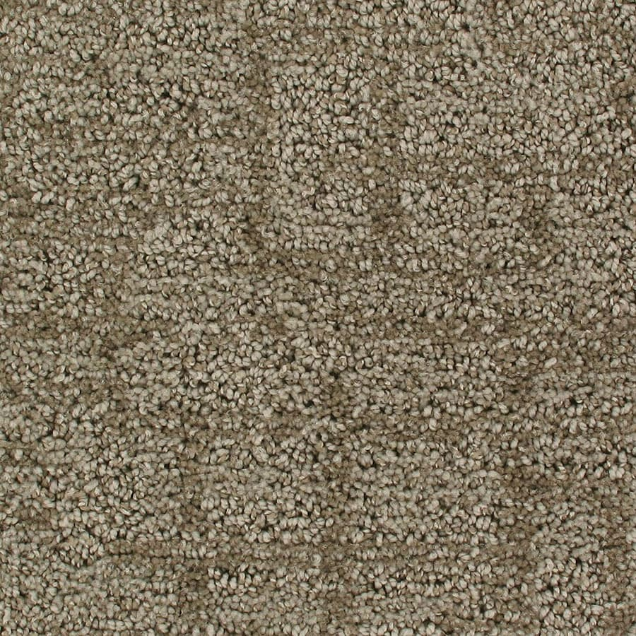 STAINMASTER Galaxy Active Family Halo Cut and Loop Carpet Sample
