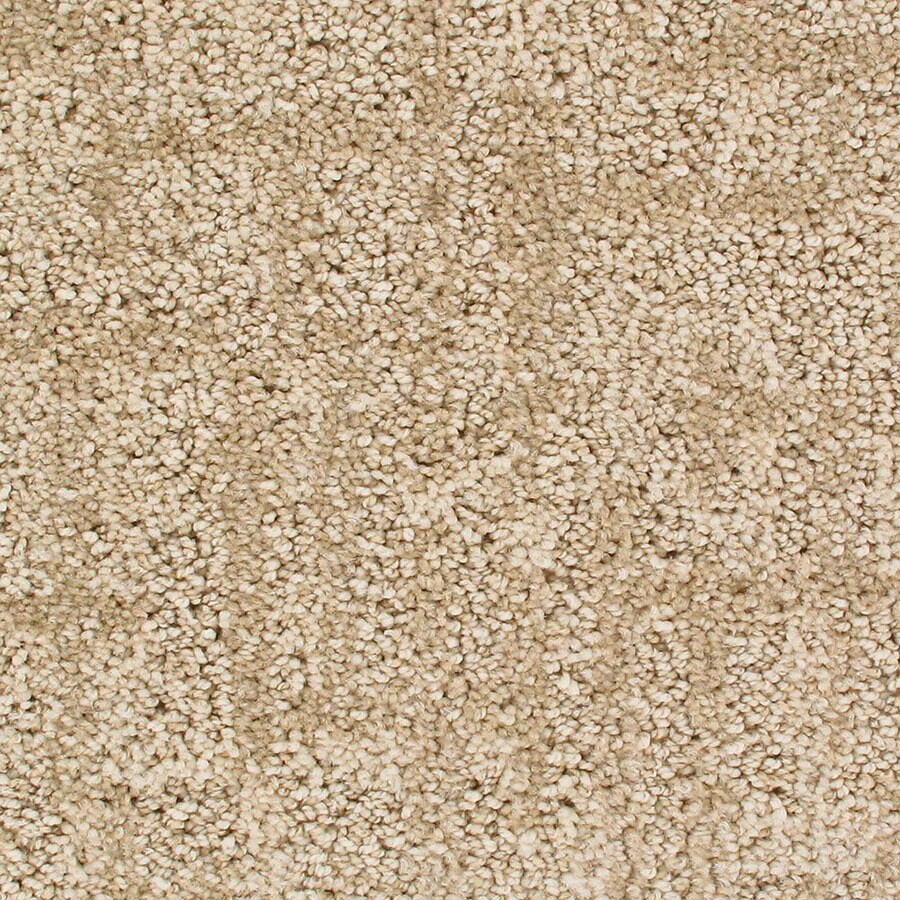 STAINMASTER Galaxy Active Family Big Dipper Cut and Loop Carpet Sample