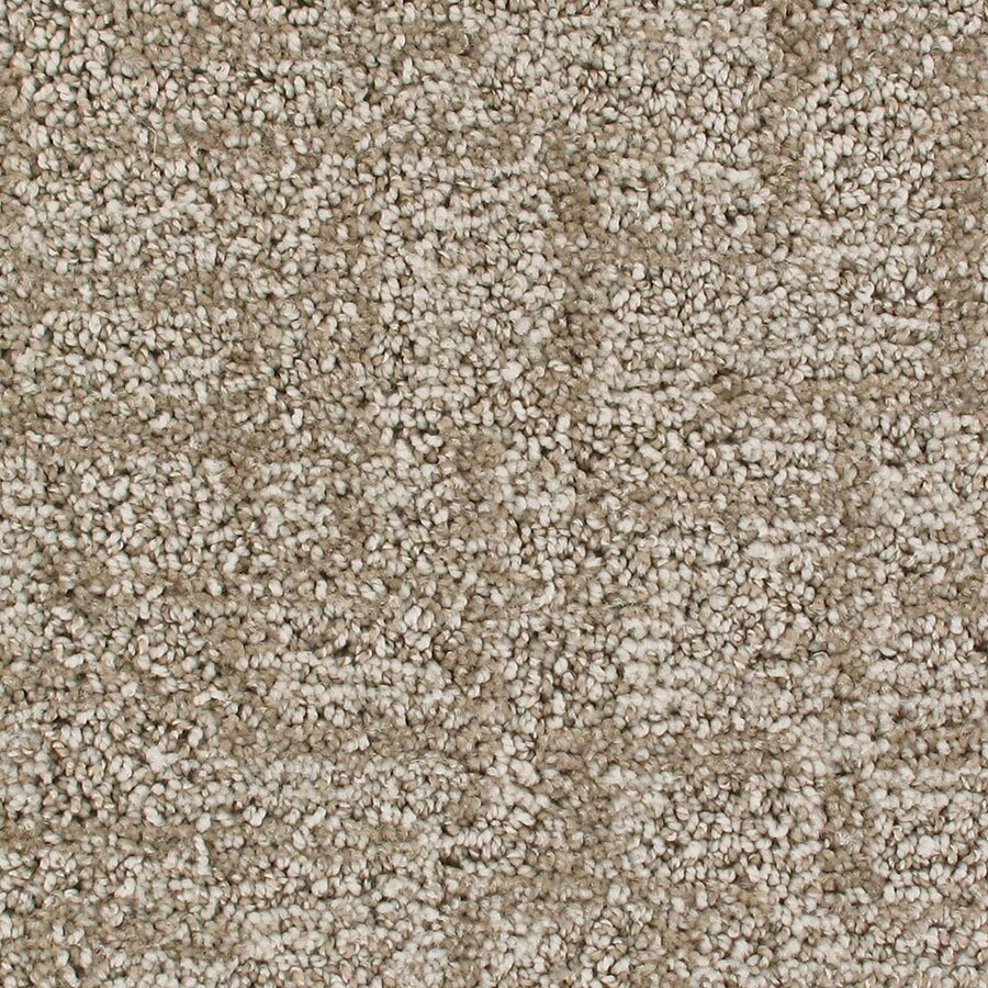 STAINMASTER Galaxy Active Family Cloud Mist Cut and Loop Carpet Sample