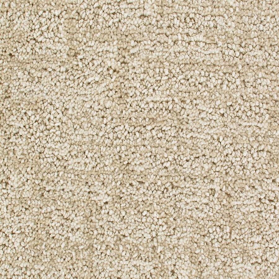 STAINMASTER Galaxy Active Family Magellan Cut and Loop Carpet Sample