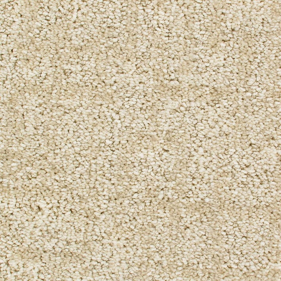 STAINMASTER Galaxy Active Family Supernova Cut and Loop Carpet Sample