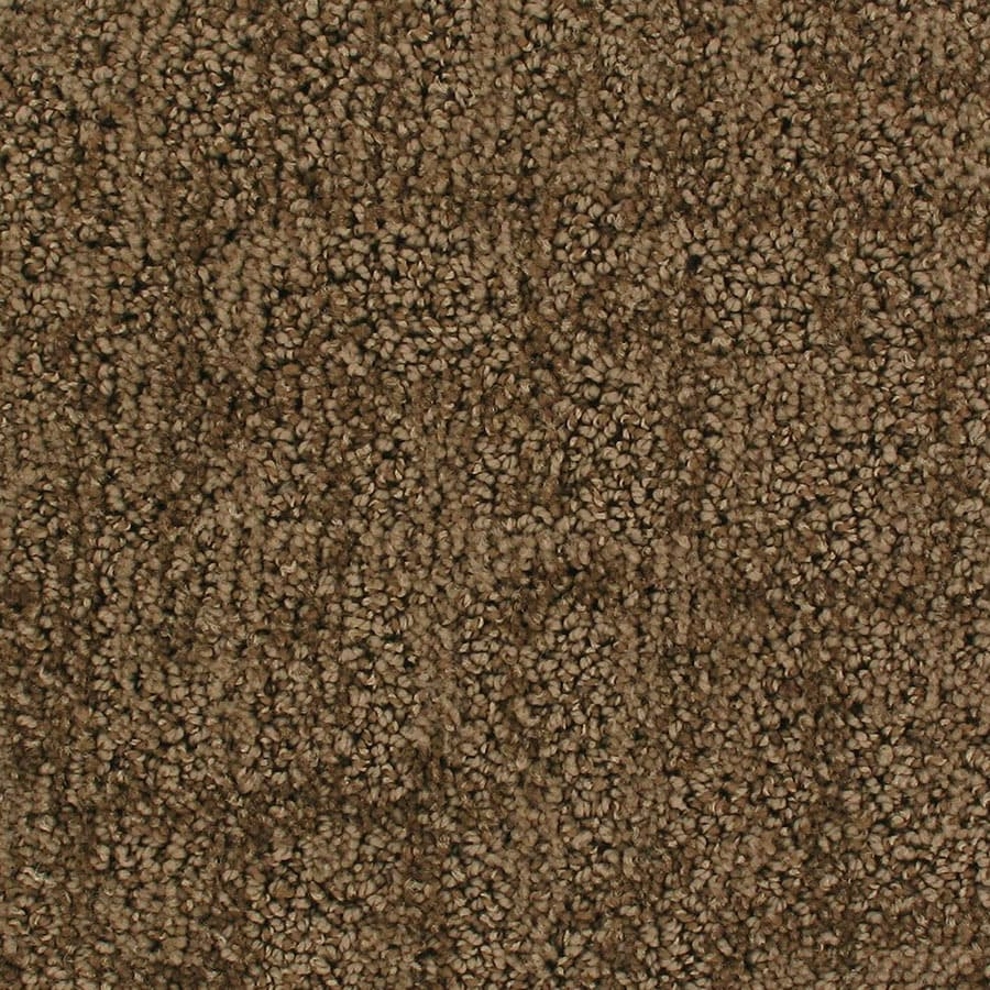 STAINMASTER Active Family Galaxy Flyby Berber/Loop Carpet Sample