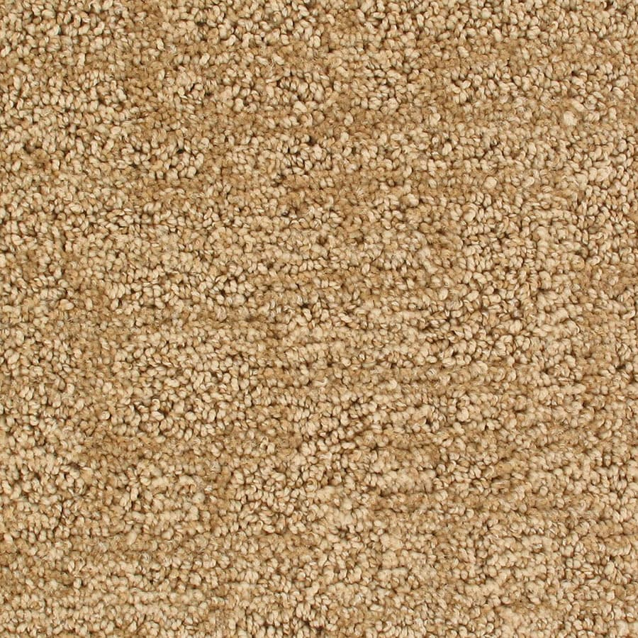 STAINMASTER Active Family Galaxy Meteor Berber/Loop Carpet Sample