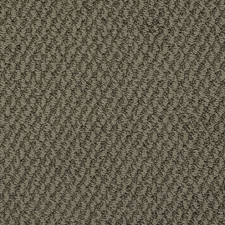 STAINMASTER Oracle Active Family Notre Dame Berber Carpet Sample