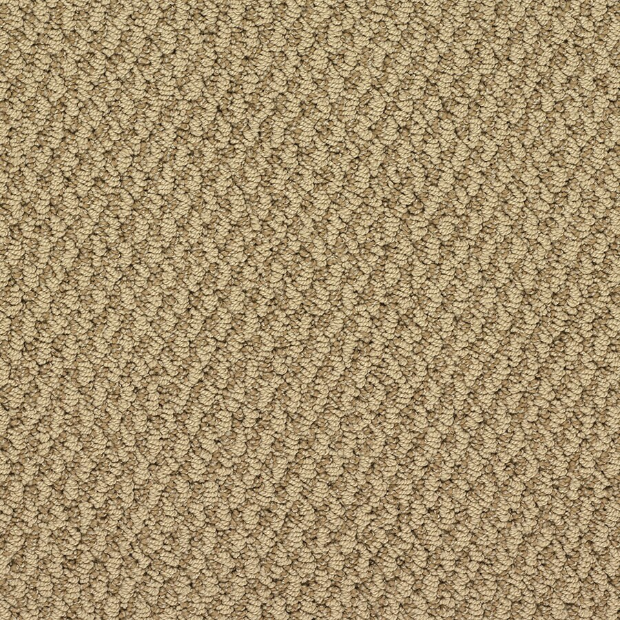 STAINMASTER Active Family Oracle Chrysler Bldg Berber/Loop Carpet Sample