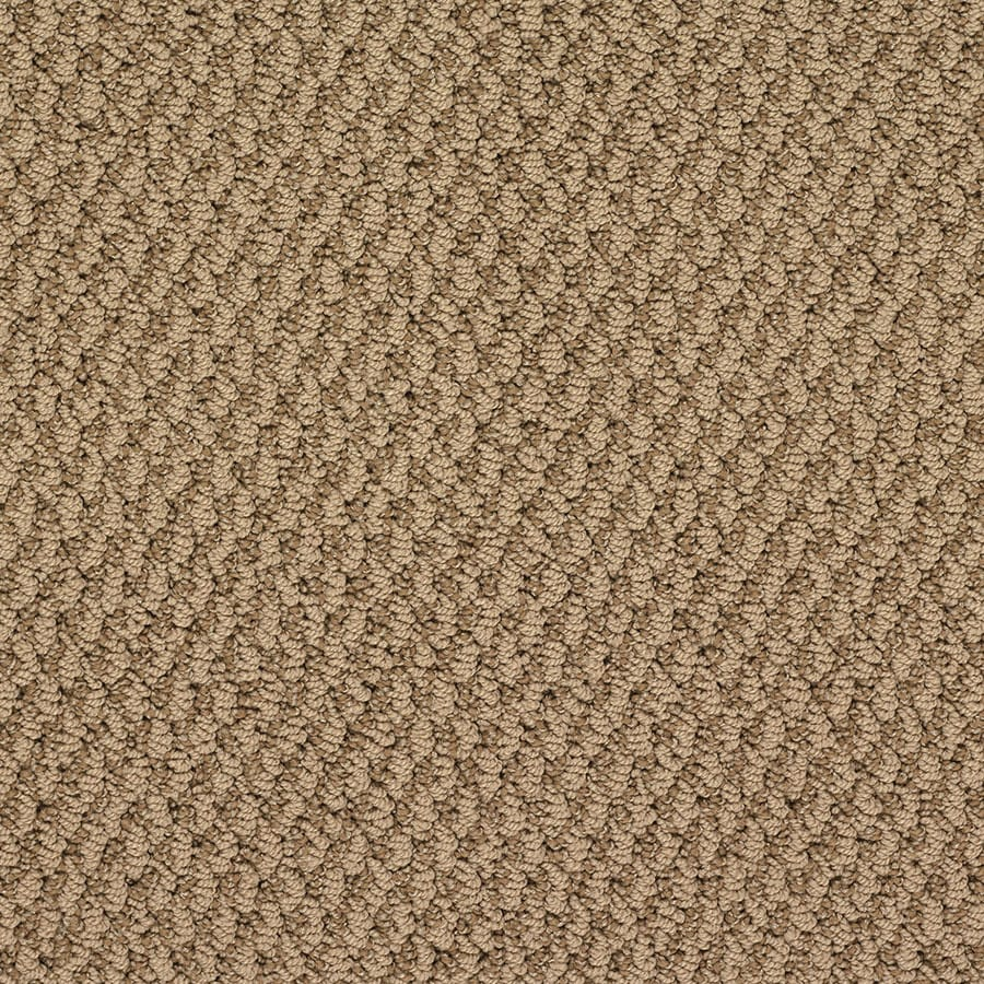 STAINMASTER Oracle Active Family Giza Pyramid Berber Carpet Sample