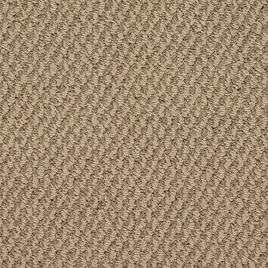 STAINMASTER Oracle Active Family Taj Mahal Berber Carpet Sample