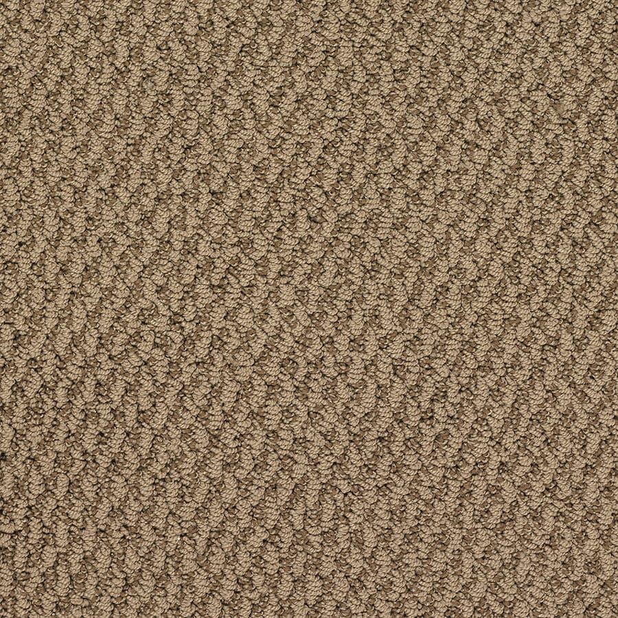 STAINMASTER Oracle Active Family Baseball Berber Carpet Sample