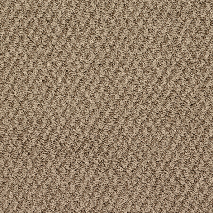 STAINMASTER Oracle Active Family Brooklyn Bridge Berber Carpet Sample