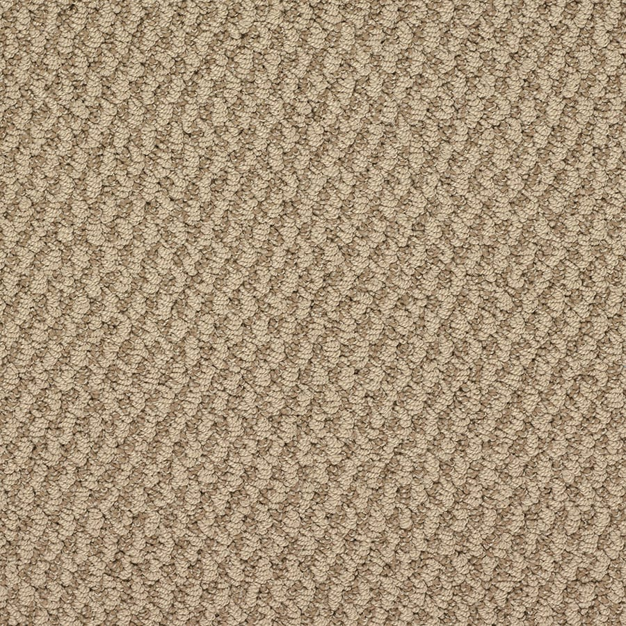 STAINMASTER Oracle Active Family Versailles Berber Carpet Sample